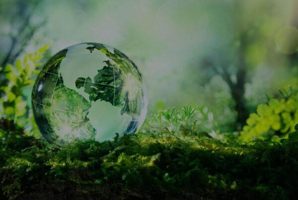 Fit for 55 Rolul cladirilor in efortul UE de combatere a schimbarilor climatice - romania eficienta