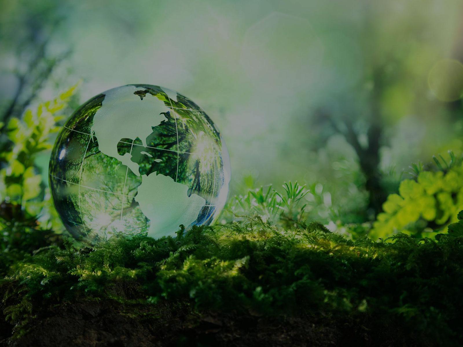 Fit for 55: Rolul clădirilor în efortul UE de combatere a schimbărilor climatice